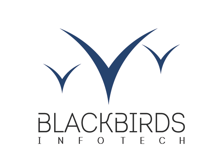 Blackbirds Infotech - Power to solve it